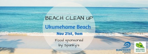 Ukumehame Beach Cleanup, Saturday Nov. 21st